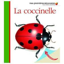 la-coccinelle-premieres-decouvertes-gallimard