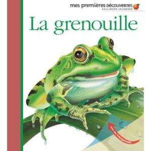 grenouille-premieres-decouvertes.jpg